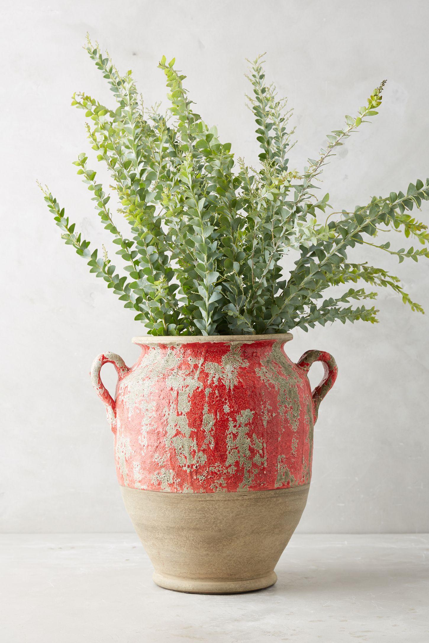 avignon ceramic vase  anthropologie -