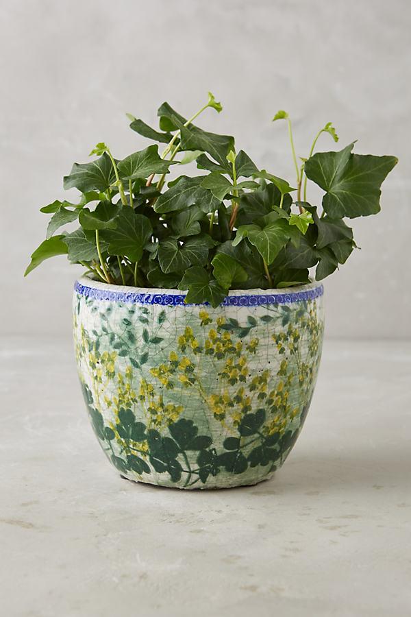 Aveyron Pot - Green, Size S