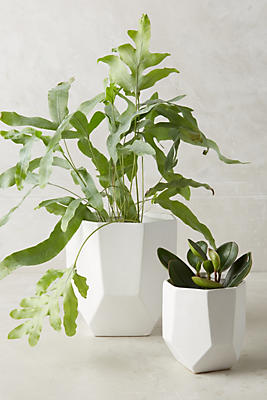Slide View: 1: Cut Ceramic Planter