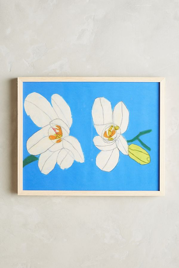 Flowers Wall Art | Anthropologie