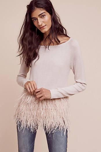 Snowbird Pullover