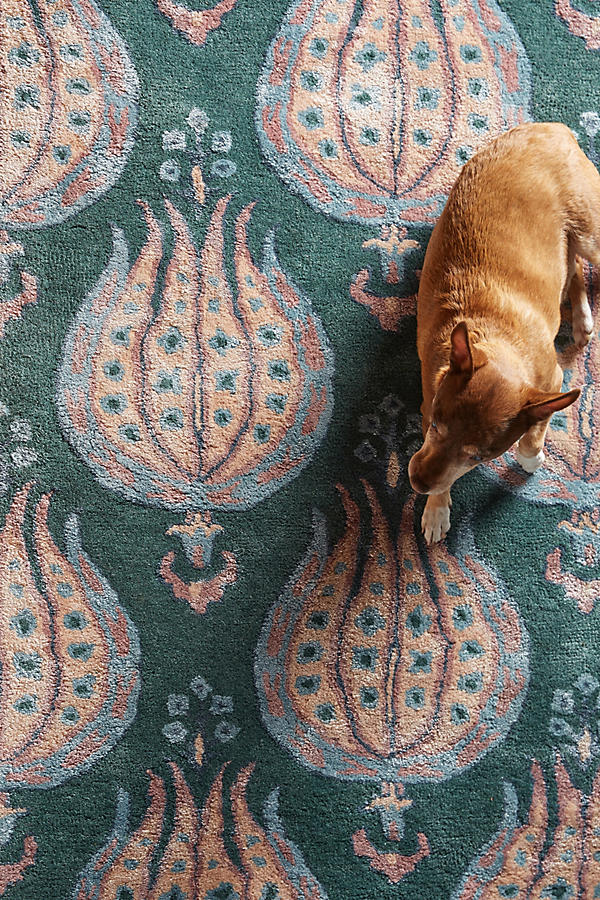 Slide View: 2: Boleyn Rug