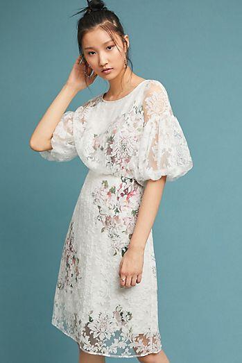 Wedding Guest Dresses - Women\'s Dresses On Sale | Anthropologie