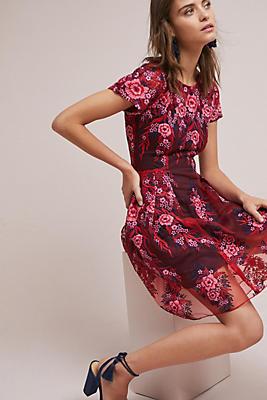 Slide View: 1: Rosa Lace Dress