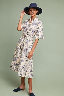 Slide View: 1: Benay Shirtdress