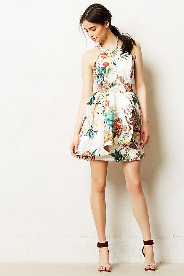 Botanic Atelier Peplum Dress | Anthropologie