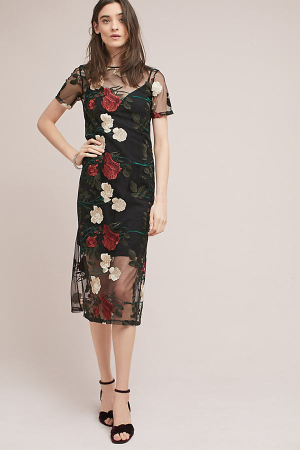 Tippi Embroidered Floral Midi Dress, Black - Black, Size Uk 16