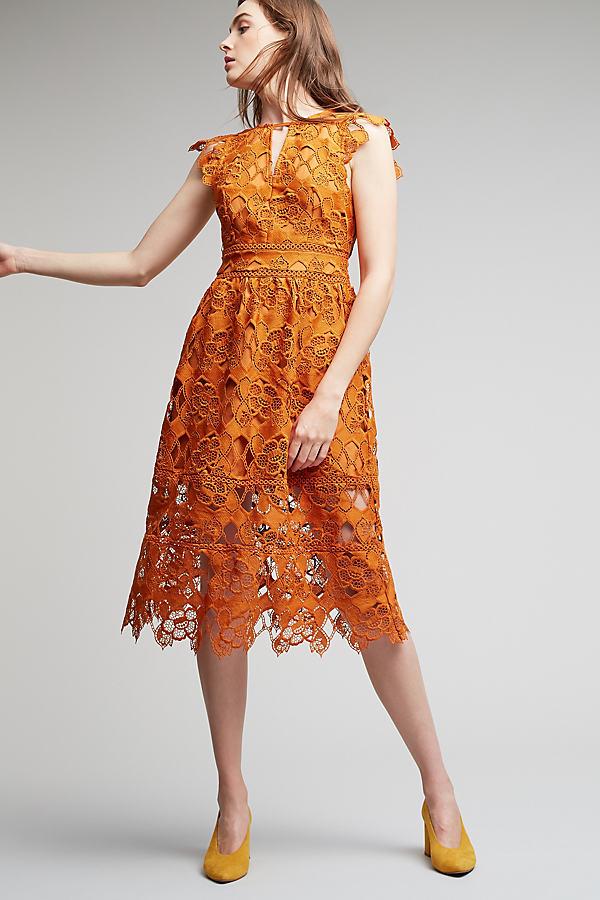Firenze Lace Midi Dress - Gold, Size Xs