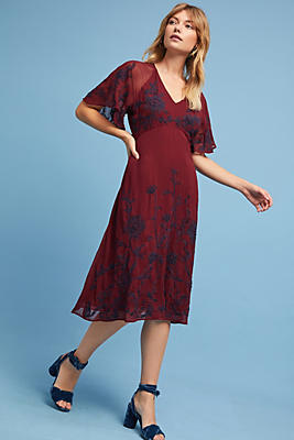Slide View: 1: Francoise Embroidered Dress