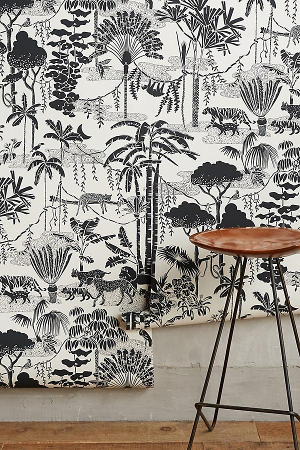 Aimee Wilder Jungle Dream Wallpaper In Black