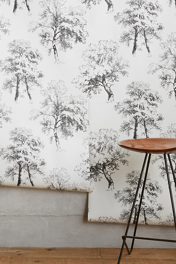 Slide View: 2: Deciduous Forest Wallpaper