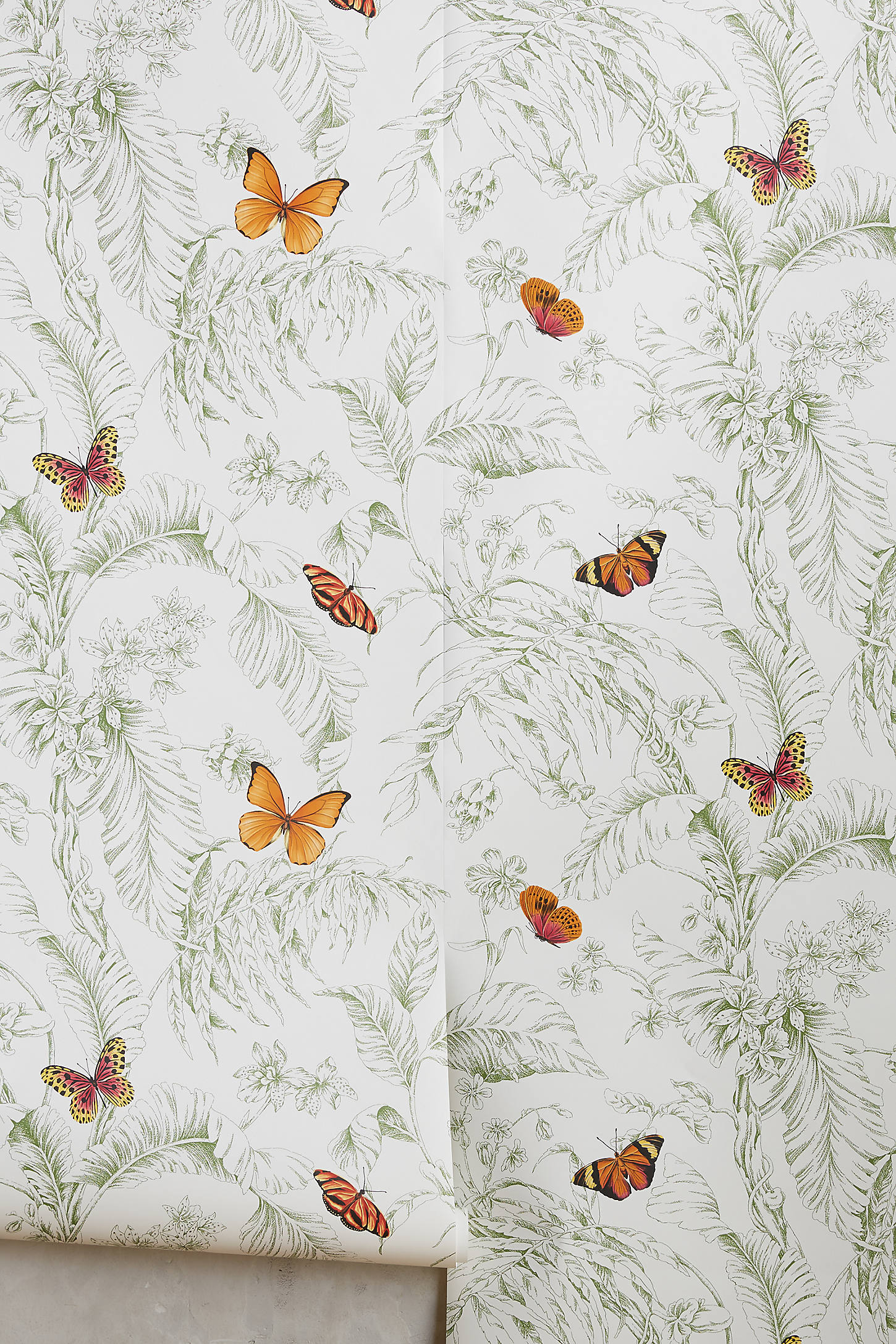 Papillon Wallpaper