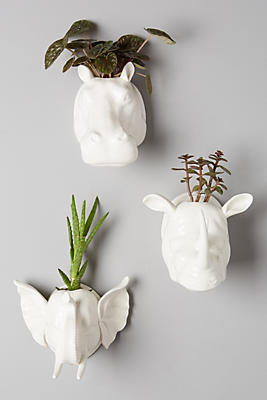 Sahel Wall Planter