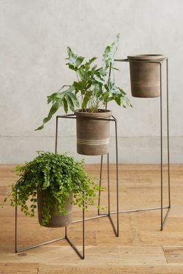 Plant Stand Trio Anthropologie