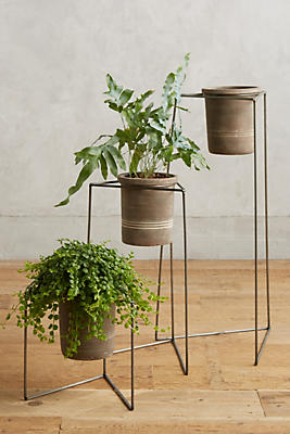 Slide View: 1: Plant Stand Trio