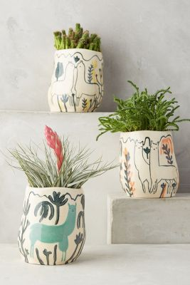 Wild Alpaca Pot Anthropologie
