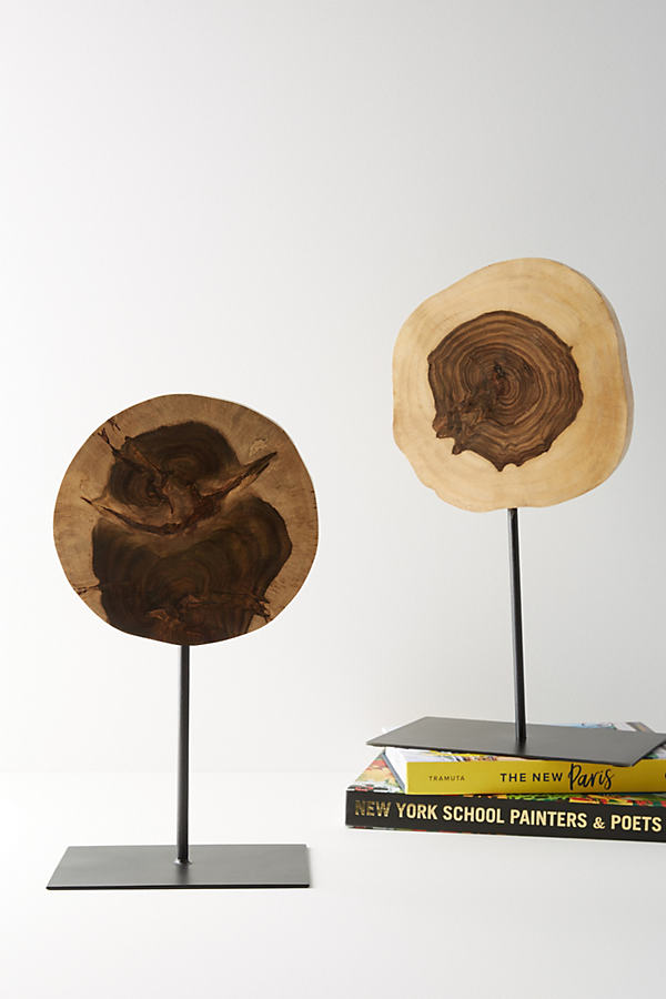 Wood Slice Decorative Object - Brown, Size S