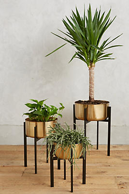 Rossum Metallic Plant Stand Anthropologie