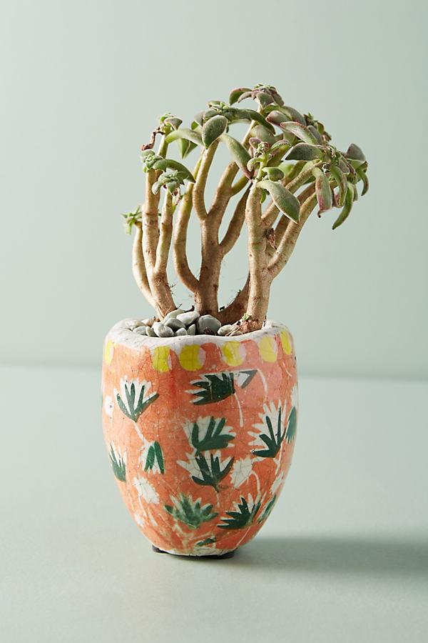 Bismark Garden Pot - Orange