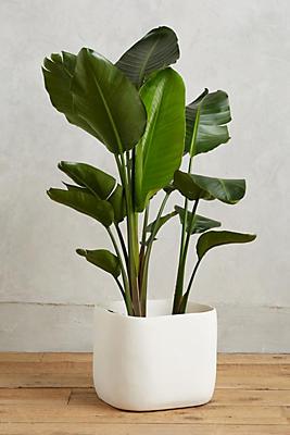 Slide View: 1: Sculpted Planter