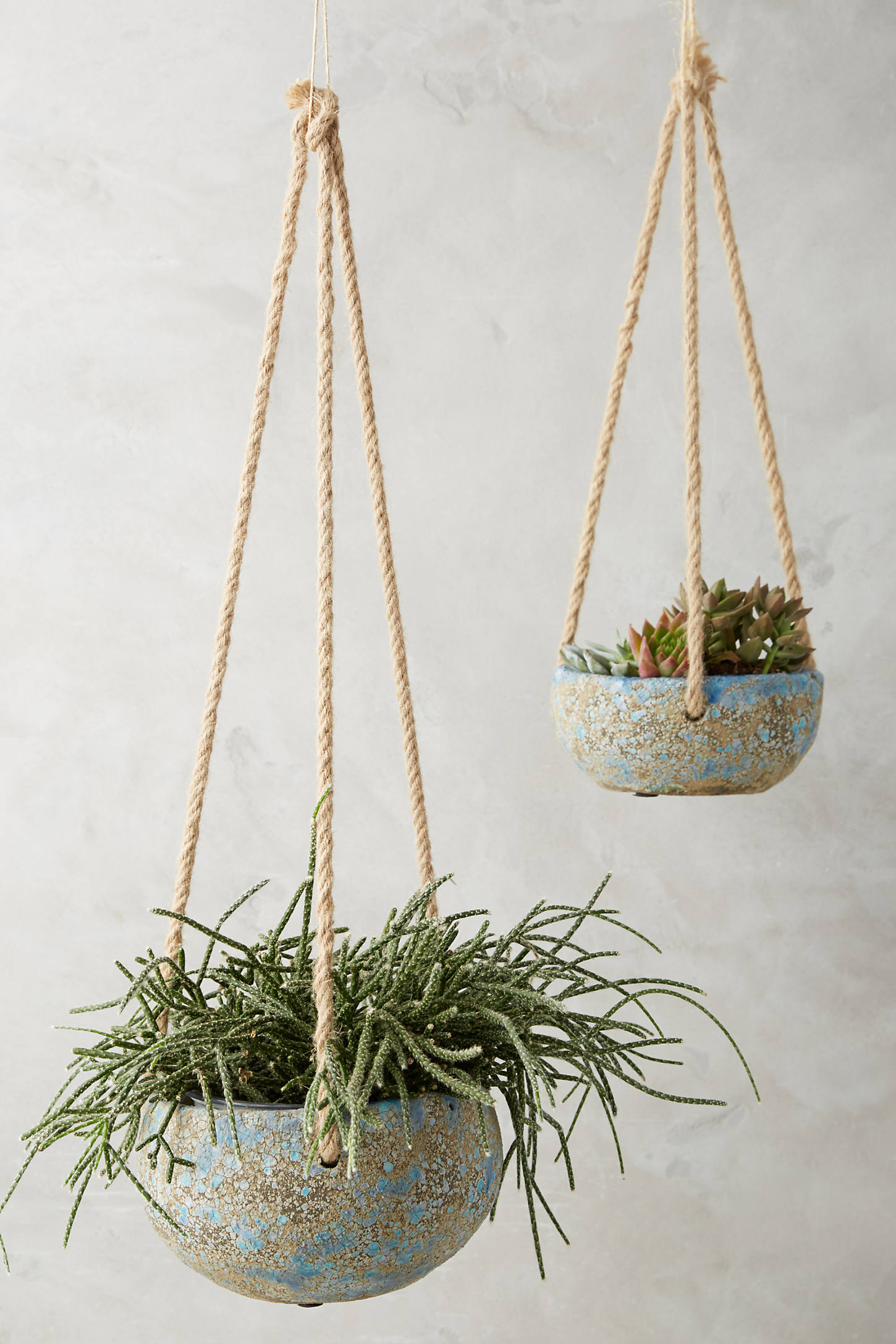 Reactive Hanging Planter