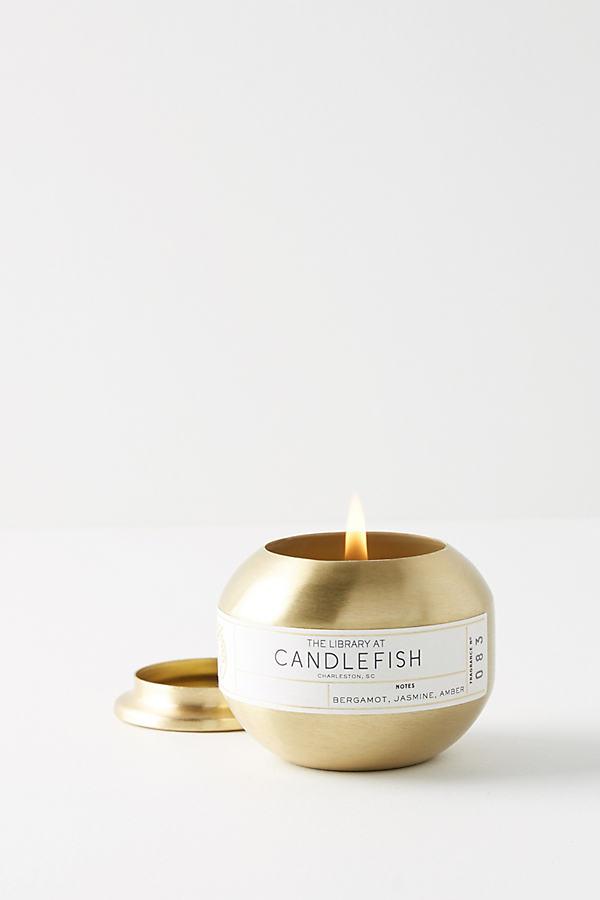 Candlefish Candle Tin - Gold