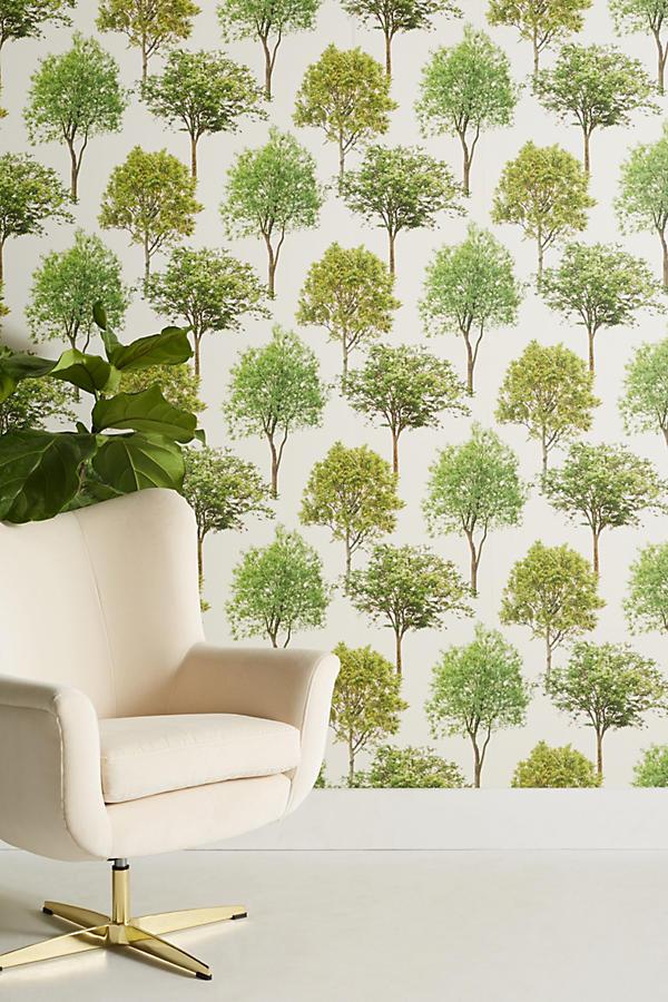 Slide View: 1: Tree Tops Wallpaper