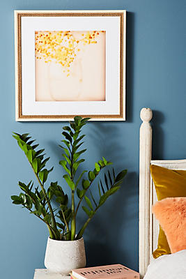 Slide View: 1: Sweet Mimosa Wall Art