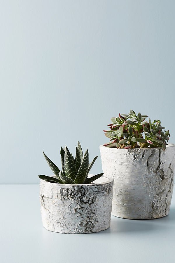 Metallic Faux Bark Planter - Silver, Size S
