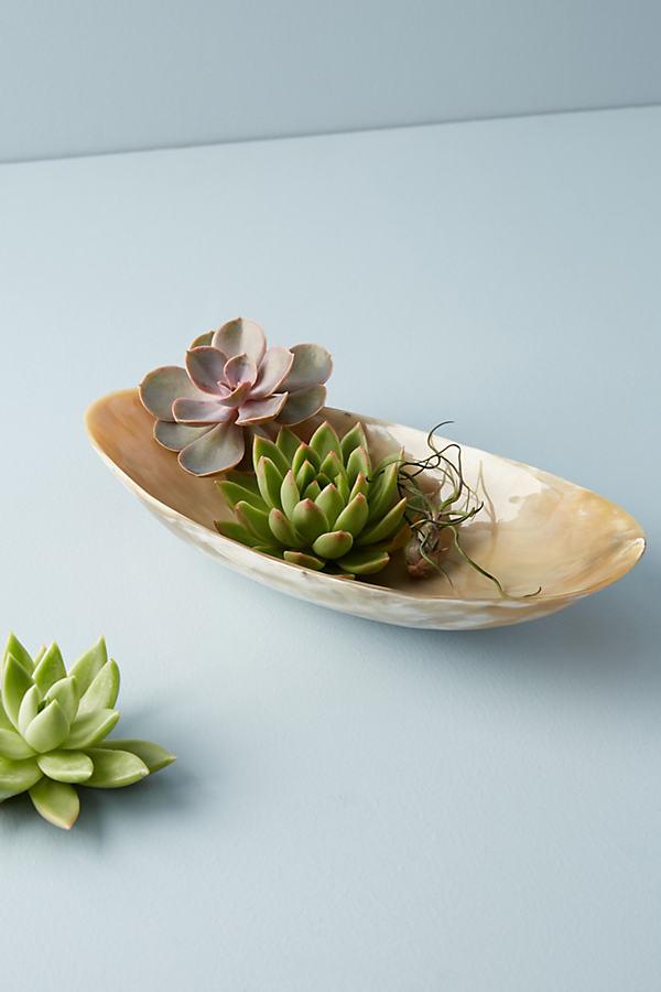 Astrid Decorative Bowl - Neutral, Size Pasta