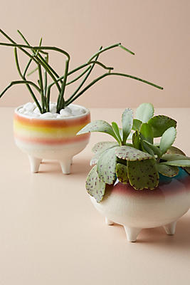 Slide View: 2: Glazed Ombre Planter
