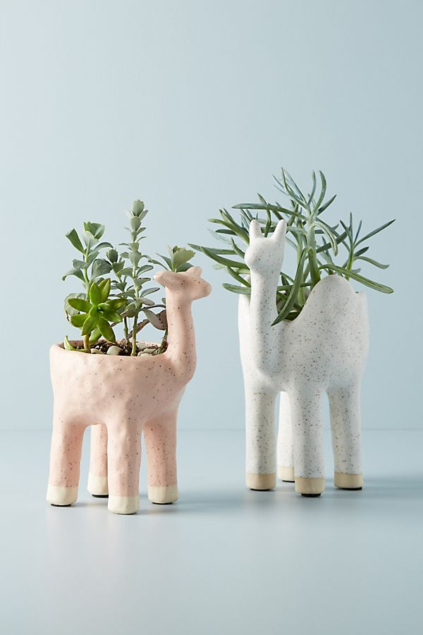 Gazelle Pot | Anthropologie