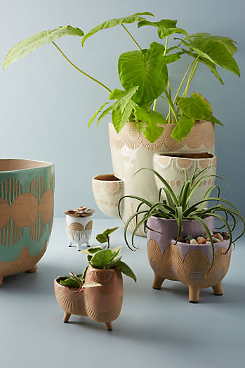 Planters Plant Stands Amp Pots For Outdoors Anthropologie