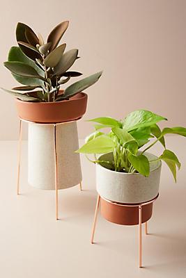 Slide View: 1: Tripod Plant Stand