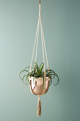 Slide View: 2: Ari Hanging Pot