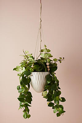 Slide View: 3: Beaded Ceramic Hanging Planter