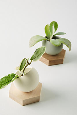 Slide View: 1: Wooden Pod Planter Set