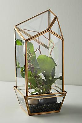 Slide View: 1: Glass Terrarium