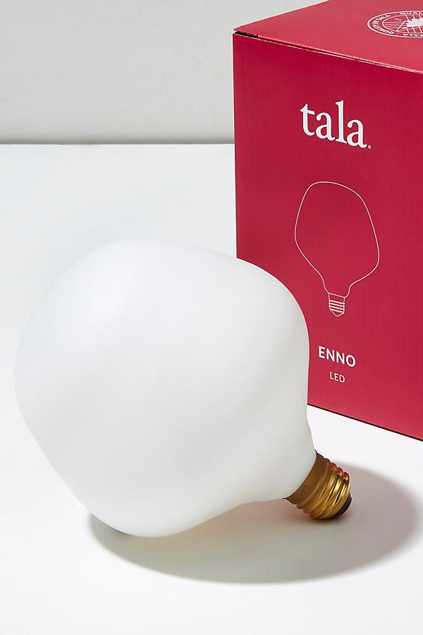 Tala Enno Porcelain Bulb - Assorted