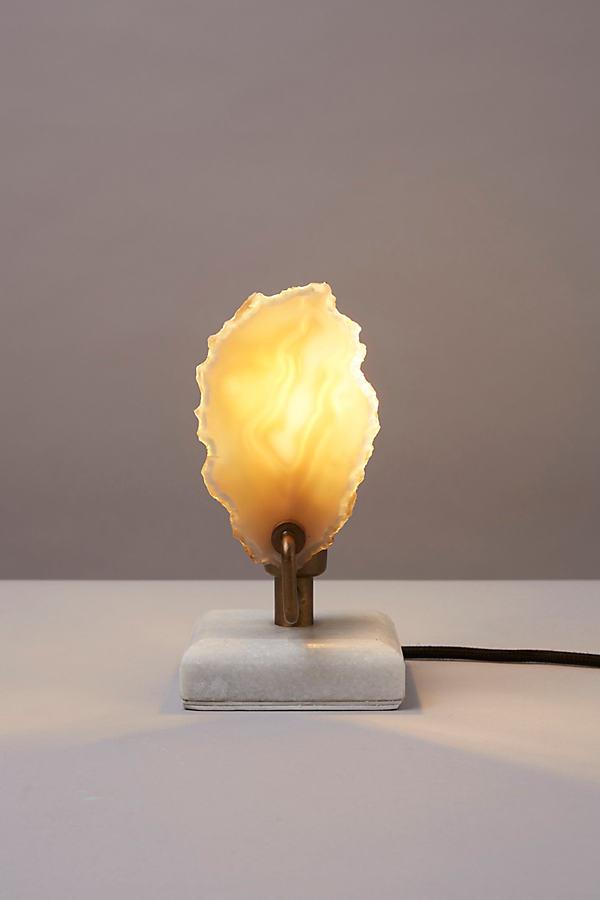 Tazari Table Lamp