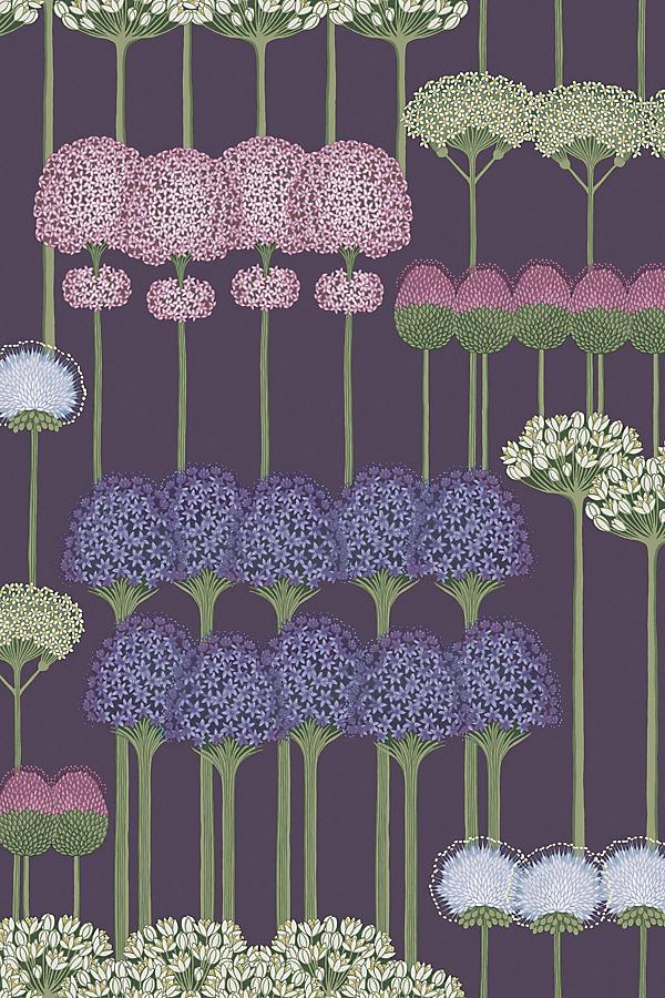Allium Wallpaper - Purple
