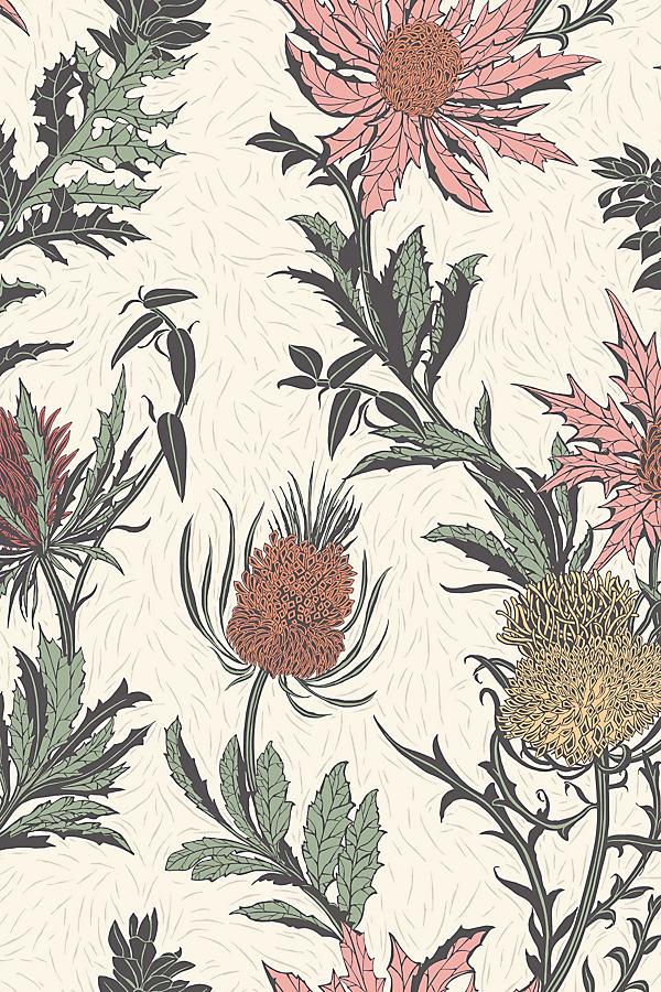Thistle Wallpaper - Orange