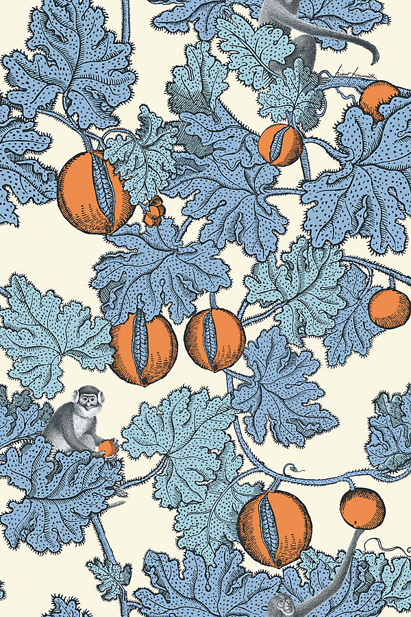 Frutto Proibito Wallpaper - Orange