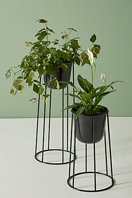 Slide View: 1: Griffard Plant Stand