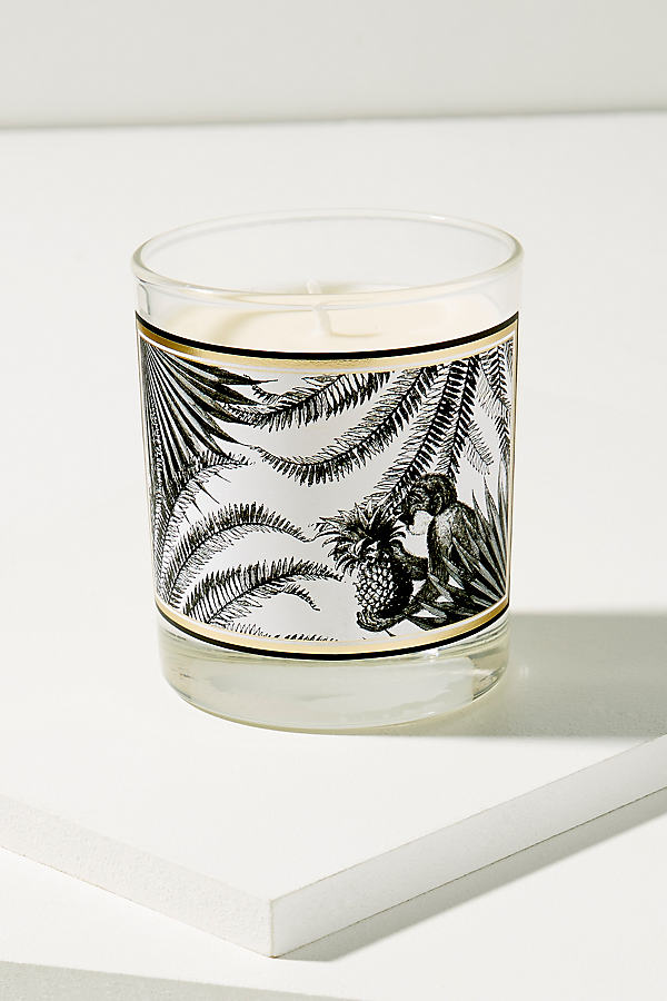 Tropical Paradise Candle - White