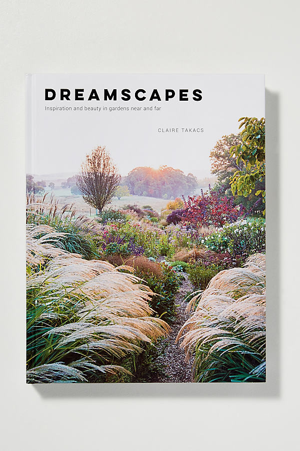 Buch: Dreamscapes - A/s