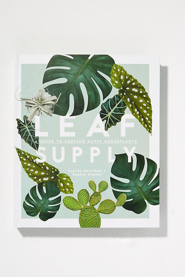 Leaf Supply - Assorted