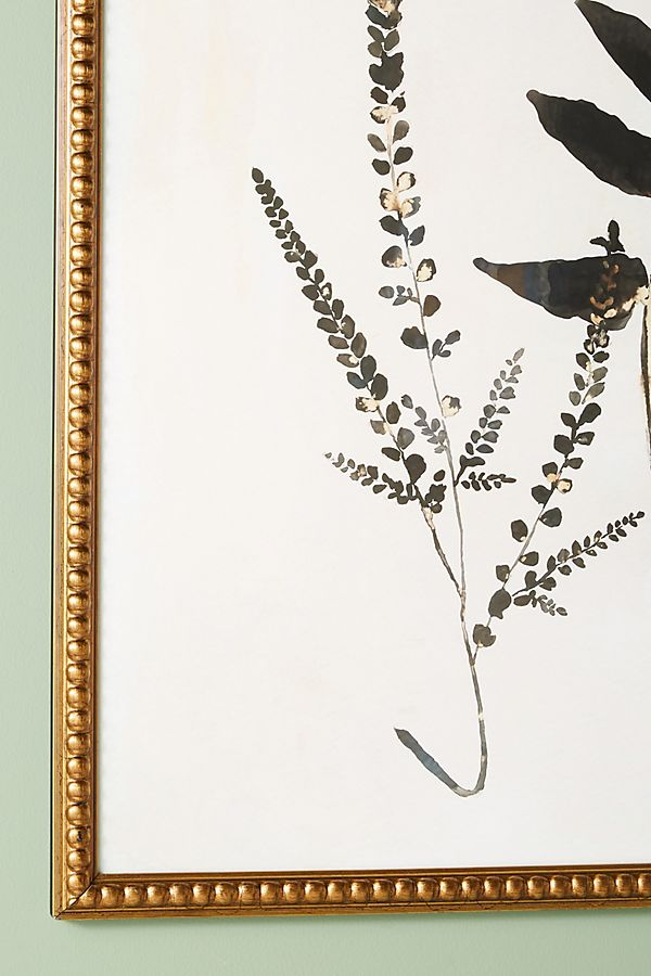 Upright Fern Wall Art | Anthropologie