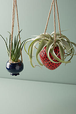 Slide View: 3: Hanging Fruit Pot