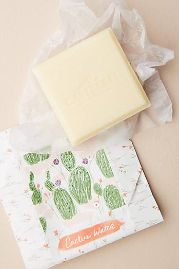 Cactus Water Bar Soap